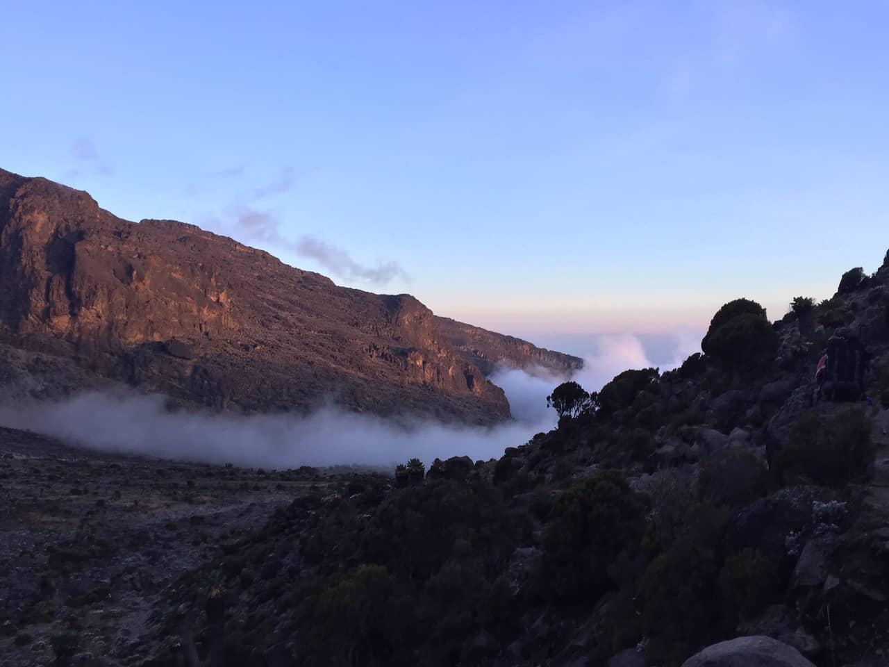 Fred's Kilimanjaro Journey 4
